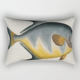 Vintage Illustration of an AngelFish (1785) Rectangular Pillow