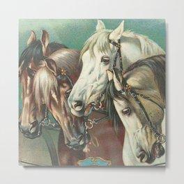 Vintage Circus Horses Metal Print
