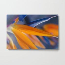 Ecstatic Motion Metal Print