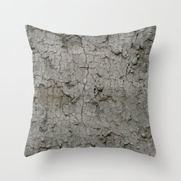 Old Brittle Wall Throw Pillow