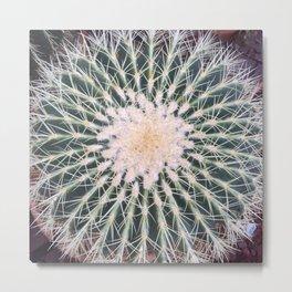 Cactus crown Metal Print