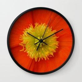 Poppy Love... Wall Clock