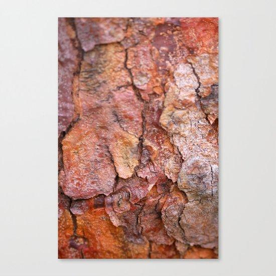 Arboretum Bark Canvas Print