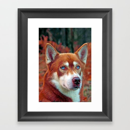 ginger Framed Art Print