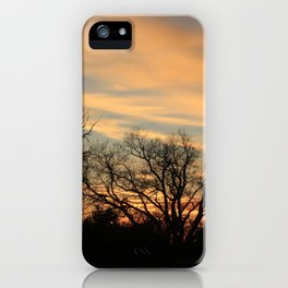 Kansas Tree Silhouette's with Sunset iPhone Case