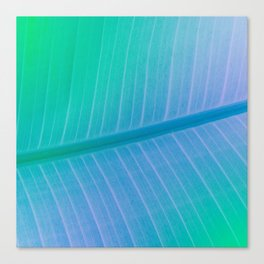 Botanical gradient Canvas Print