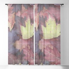 Autumn Leaves - Garden Photography by Fluid Nature Sheer Curtain