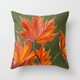 Abstract Maple Leaves Throw Pillow