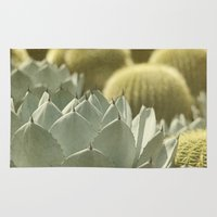 cactus Area & Throw Rugs featuring Succulent by Pure Nature Photos