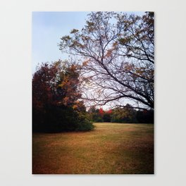 A Place To Meet Canvas Print