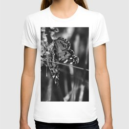 American Lady Butterfly in Black and White T-shirt