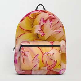 Pink Dahlia with Bright Pink tips Close Up Detail Backpack