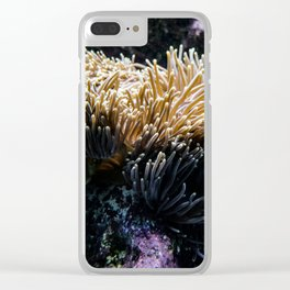 Understated Anemone Clear iPhone Case