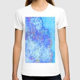 efflorescent #13.2 T-shirt