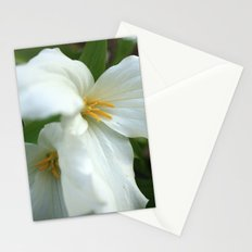 Fleeting Beauties Stationery Cards