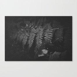 k(no)w you Canvas Print