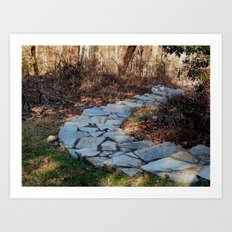 Take the path Art Print