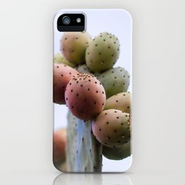 Prickly Pear Fruits iPhone Case