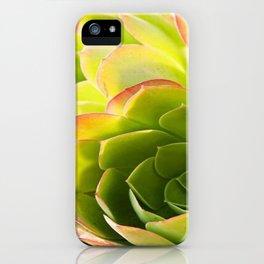BEAUTIFUL SUCCULENT iPhone Case