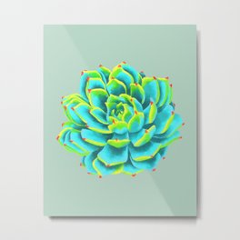 Desert flower 3 Metal Print