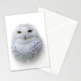 Dreamy Encounter with a Serene Snowy Owl Stationery Cards