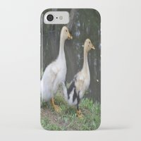 ducks iPhone & iPod Cases featuring Ducks by Stephanie Owens