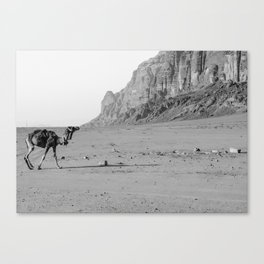 A solo Journey Canvas Print