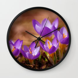 The crocus family Wall Clock