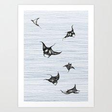 Manta rays in flight Art Print