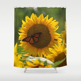 The butterfly the bee and the sunflower Shower Curtain