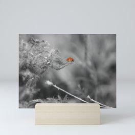 Ladybug Selective Coloring Coachella Valley Wildlife Preserve Mini Art Print