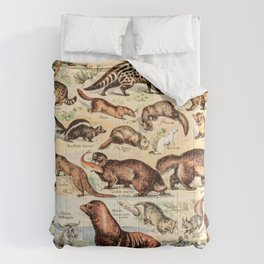 Cute Animals // Fourrures by Adolphe Millot XL 19th Century Science Textbook Diagram Artwork Comforters