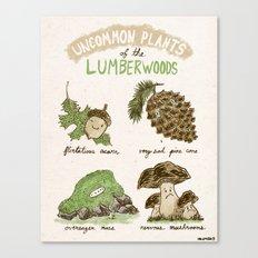Uncommon Plants Of The Lumberwood Canvas Print