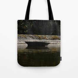 Water chemistry Tote Bag