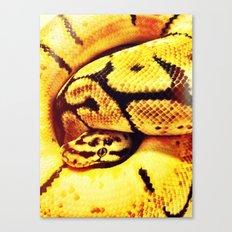 Lemon Python Canvas Print
