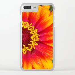The Zinnia Flower Clear iPhone Case