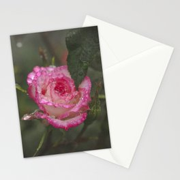 Wet Roses Stationery Cards