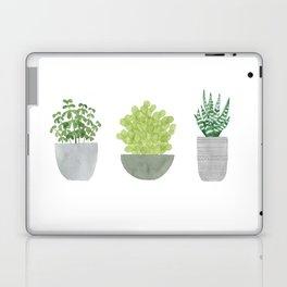Watercolor Succulent Plants Laptop & iPad Skin