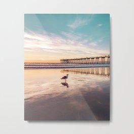 Marion's Gull Metal Print