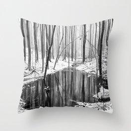 Hidden sump Throw Pillow