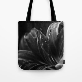 The Dark Beauty Tote Bag