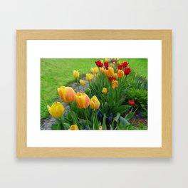 Tulipops Lollipops Framed Art Print