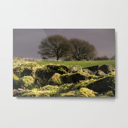 The Hill.... Metal Print