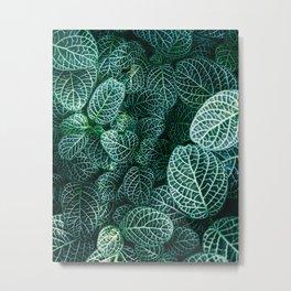 Leaves by Samuel Zeller Metal Print