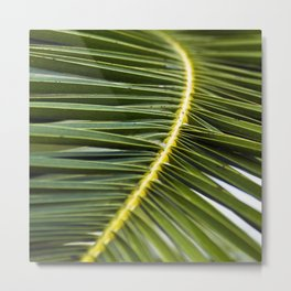 Green Palm-Leaves of Sicily Metal Print