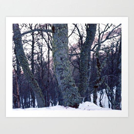 feel tree Art Print