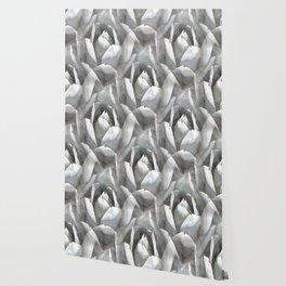 Succulent cactus watercolor Wallpaper