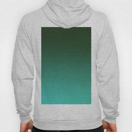 SHADOWS AND COUNTERPARTS - Minimal Plain Soft Mood Color Blend Prints Hoody