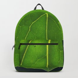 Stormy Sky under a leaf Backpack