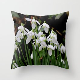 Snowdrops in the Spring Throw Pillow